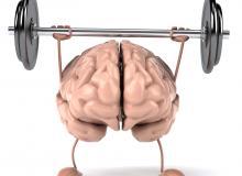 brain, mind